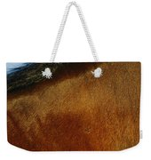 A Horses Neck And Mane, Seen So Close Weekender Tote Bag