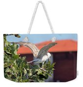 A Juvenile Herring Gull Weekender Tote Bag