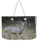A Large Antlered White-tailed Deer Weekender Tote Bag