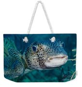 A Large Spotted Pufferfish Weekender Tote Bag