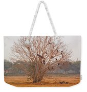A Leafless Tree That Is Home To A Large Number Of Big Birds In The Middle Of A Ground Weekender Tote Bag