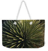 A Lechuguilla Plant In The Desert Weekender Tote Bag