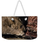 A Lion Feeding On The Carcass Of A Cape Weekender Tote Bag