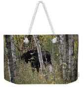 A Moose Alces Alces Americana With An Weekender Tote Bag
