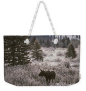 A Moose In A Frost-covered Field, Grand Weekender Tote Bag