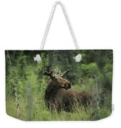 A Moose Stands In Tall Grass Weekender Tote Bag