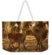 A Mother And Fawn Sika Deer Weekender Tote Bag