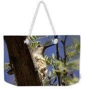 A Nesting Hummingbird Weekender Tote Bag
