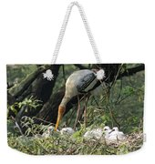 A Painted Stork Feeding Its Young At The Delhi Zoo Weekender Tote Bag