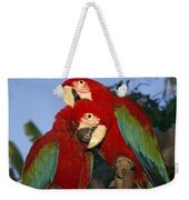 A Pair Of Captive Red-and-green Macaws Weekender Tote Bag