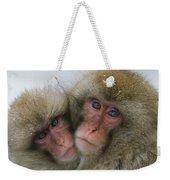 A Pair Of Japanese Macaques, Or Snow Weekender Tote Bag