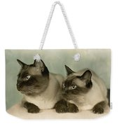 A Pair Of Siamese Cats Weekender Tote Bag