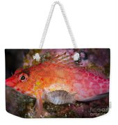 A Parasitic Isopod Has Attached Itself Weekender Tote Bag