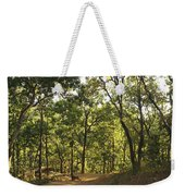 A Path Through A Sparse Forest And Trees Weekender Tote Bag