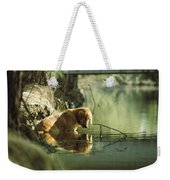 A Pet Dog Sits In The Shallow Water Weekender Tote Bag