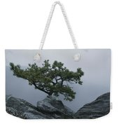 A Pine Tree Clings To A Rocky Ridge Weekender Tote Bag