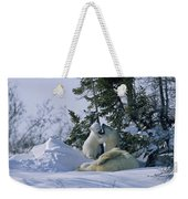 A Polar Bear Cub Plays With Its Resting Weekender Tote Bag