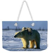 A Polar Bear Mother With Her Cub Weekender Tote Bag