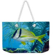 A Porkfish Swims By Sea Plumes Weekender Tote Bag by Terry Moore