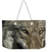 A Portrait Of A Gray Wolf Weekender Tote Bag