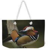 A Portrait Of A Mandarin Duck Weekender Tote Bag
