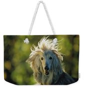 A Portrait Of An Afghan Hound Weekender Tote Bag