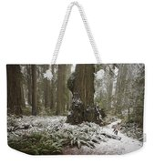 A Rare Snow Dusts The Trail Through Del Weekender Tote Bag
