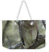 A Red Shouldered Hawk Perches In A Tree Weekender Tote Bag
