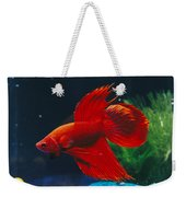 A Red Siamese Fighting Fish In An Weekender Tote Bag