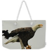 A Red Wing Black Bird Attacks A Bald Weekender Tote Bag