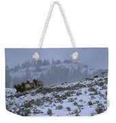 A Reintroduced Wolf Chases A Herd Weekender Tote Bag
