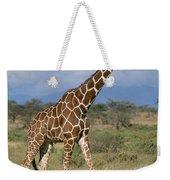 A Reticulated Giraffe On A Samburu Weekender Tote Bag
