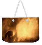 A Roaming Horse In Montana Weekender Tote Bag