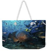 A School Of Golden Trevally Follow Weekender Tote Bag
