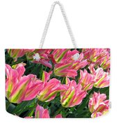 A Sea Of Pink Tulips. Square Format Weekender Tote Bag