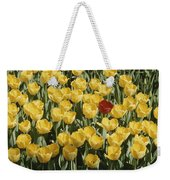 A Single Red Tulip Among Yellow Tulips Weekender Tote Bag