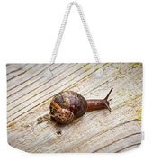 A Snail Sliding Across A Wooden Surface Weekender Tote Bag by Tom Gowanlock