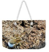 A Spider With The Egg Sack Square Weekender Tote Bag