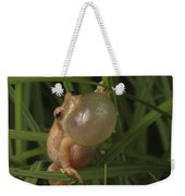 A Spring Peeper Faces The Camera Weekender Tote Bag