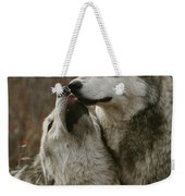 A Submissive Beta Gray Wolf, Canis Weekender Tote Bag