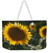 A Sunflower Bows To Its Own Weight Weekender Tote Bag