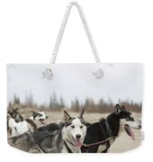 A Team Of Dogs Pull A Cart Weekender Tote Bag