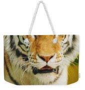 A Tiger Weekender Tote Bag