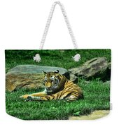 A Tiger's Gaze Weekender Tote Bag by Paul Ward