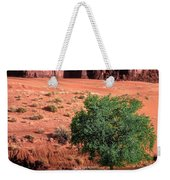 A Touch Of Green At Monument Valley Weekender Tote Bag