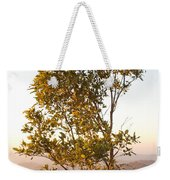 A Tree Outlined By The Rays Of The Setting Sun At Pachmarhi Weekender Tote Bag