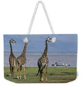 A Trio Of Giraffes Near The Edge Weekender Tote Bag