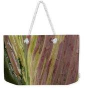 A Varigated Leaf Cast-iron Plant Weekender Tote Bag