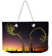 A View At Twilight Of A Boojum Tree Weekender Tote Bag