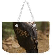 A Wedge-tailed Eagle At A Wild Bird Weekender Tote Bag
